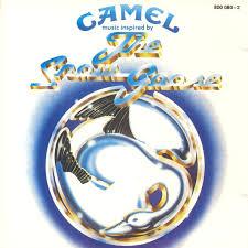 Camel_Snow_Goose