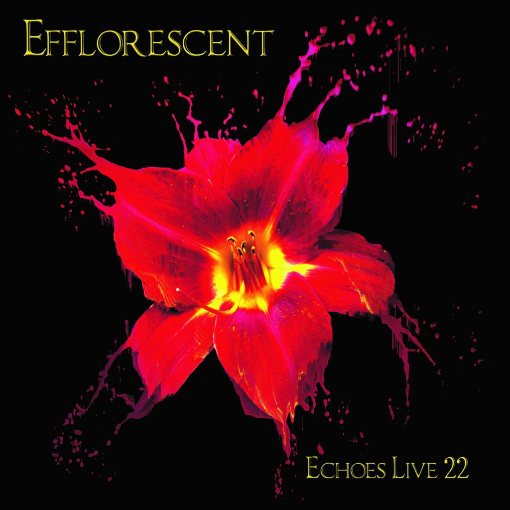 lrc22-efflorescent