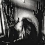 Harmonic_Behind the Shadow Drops